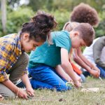 bushcraft skills for primary schools